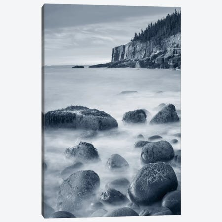 Acadia Coast Canvas Print #WAC7483} by Alan Majchrowicz Art Print