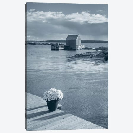 By The Sea III, No Border Canvas Print #WAC7493} by Alan Majchrowicz Canvas Art