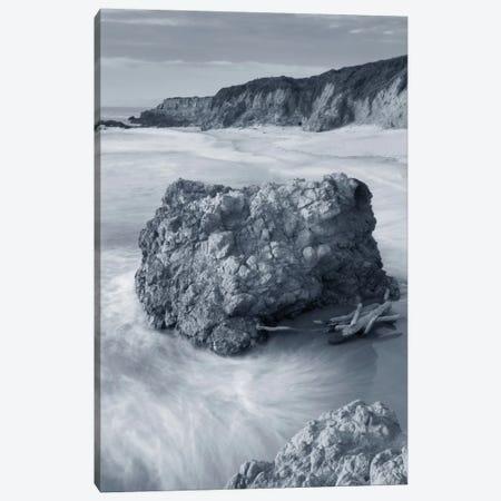 California Coast Canvas Print #WAC7496} by Alan Majchrowicz Art Print