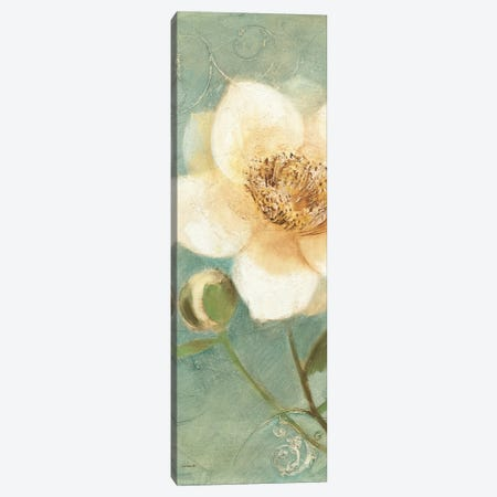 Pretty Peony Canvas Print #WAC7519} by Albena Hristova Art Print