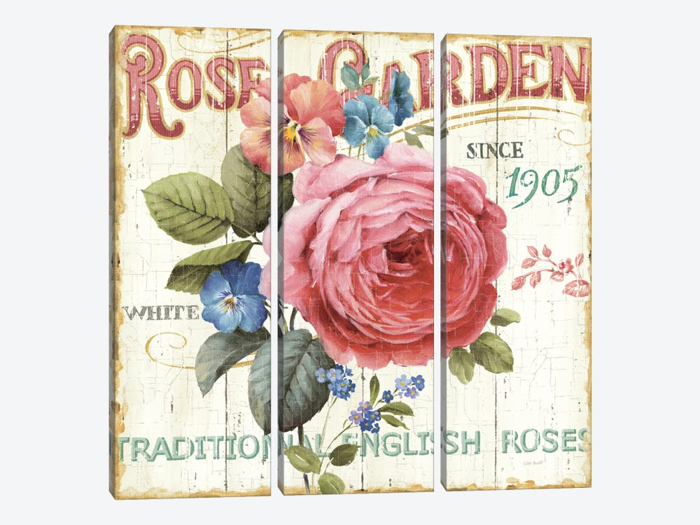 Rose Garden I  by Lisa Audit 3-piece Canvas Artwork