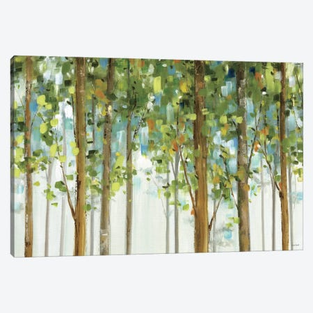 Forest Study I Crop Canvas Print #WAC755} by Lisa Audit Canvas Print