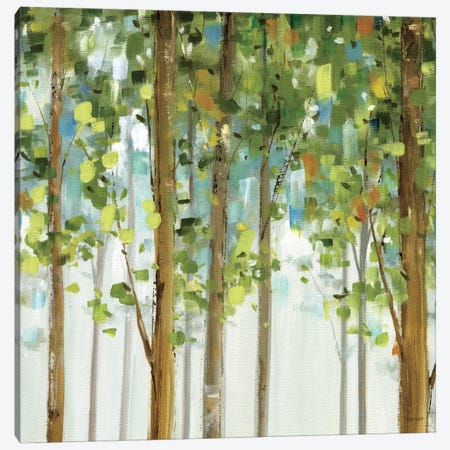 Forest Study II Canvas Print #WAC756} by Lisa Audit Canvas Print