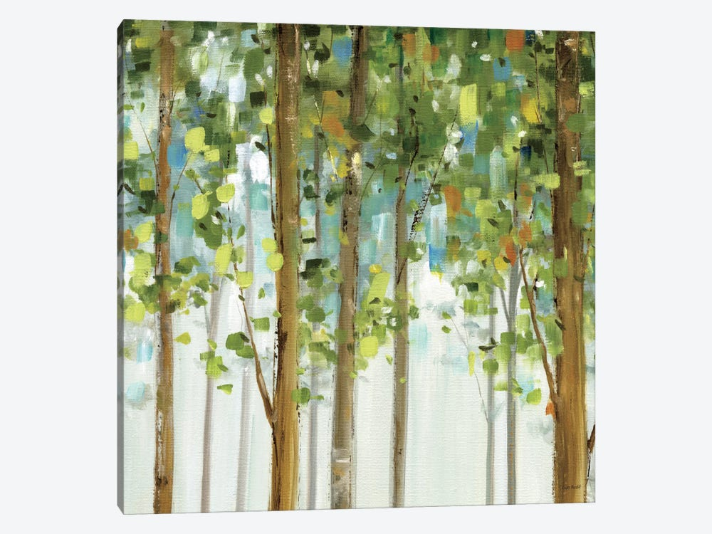 Forest Study II by Lisa Audit 1-piece Canvas Wall Art