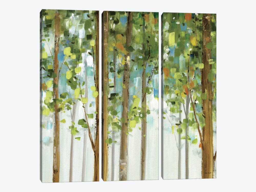 Forest Study II by Lisa Audit 3-piece Canvas Artwork