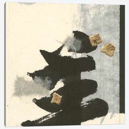 Collage IV Canvas Print #WAC7570} by Chris Paschke Canvas Print