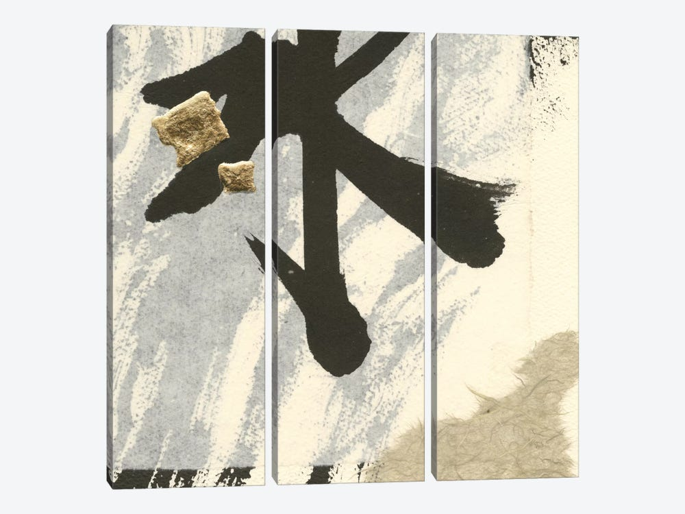Collage VIII by Chris Paschke 3-piece Canvas Print