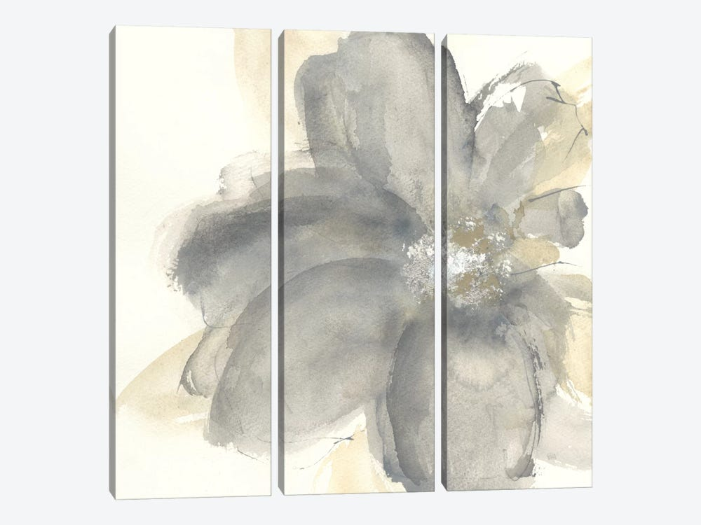 Floral Gray I by Chris Paschke 3-piece Canvas Art Print