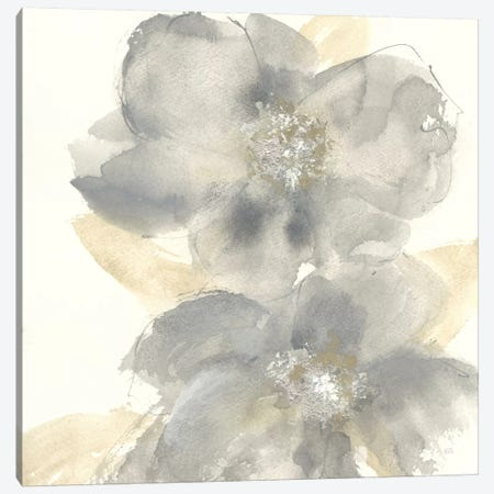 Floral Gray II Canvas Print #WAC7577} by Chris Paschke Canvas Art