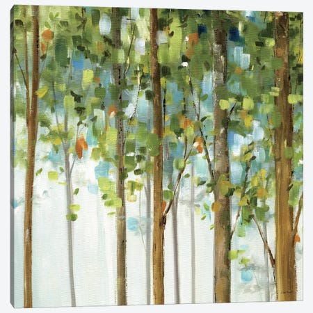 Forest Study III Canvas Print #WAC757} by Lisa Audit Canvas Art Print