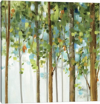 Forest Study III Canvas Art Print