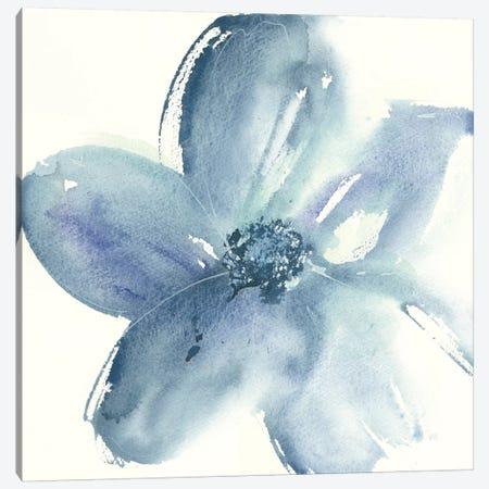 Indigo Mint I Canvas Print #WAC7586} by Chris Paschke Canvas Print