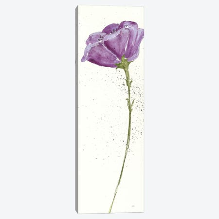 Mint Poppies In Purple II Canvas Print #WAC7591} by Chris Paschke Art Print