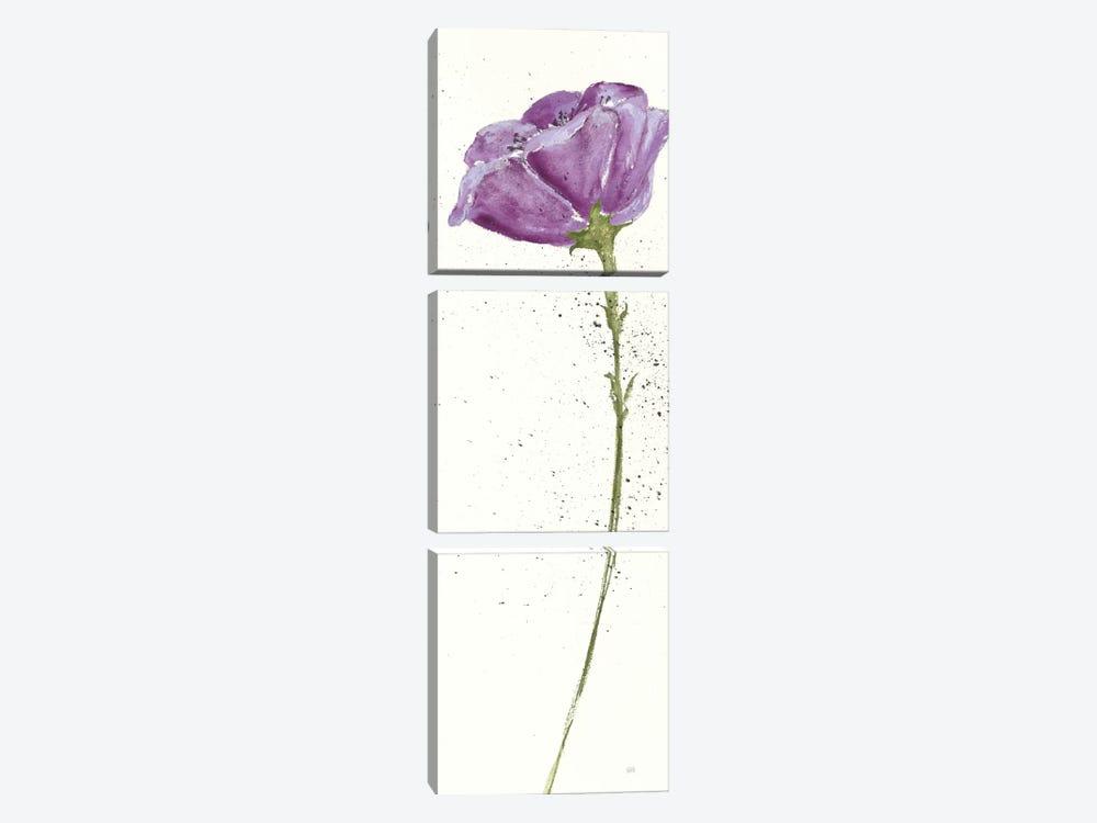 Mint Poppies In Purple II by Chris Paschke 3-piece Canvas Art