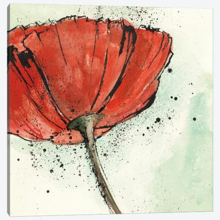Not A California Poppy I.B Canvas Print #WAC7592} by Chris Paschke Canvas Art Print