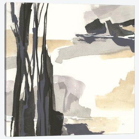 Placid III Canvas Print #WAC7598} by Chris Paschke Canvas Art Print