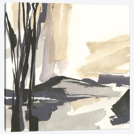 Placid IV Canvas Print #WAC7599} by Chris Paschke Art Print