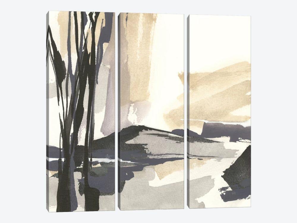 Placid IV by Chris Paschke 3-piece Canvas Art