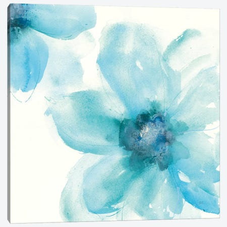 Teal Cosmos I Canvas Print #WAC7605} by Chris Paschke Canvas Artwork
