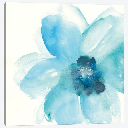 Teal Cosmos II Canvas Print #WAC7606} by Chris Paschke Canvas Artwork