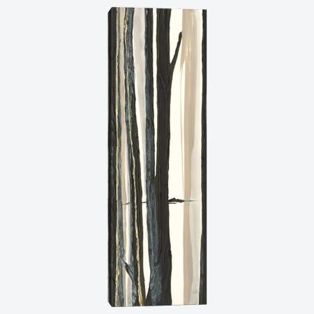 Through The Trees I Canvas Print #WAC7607} by Chris Paschke Canvas Art