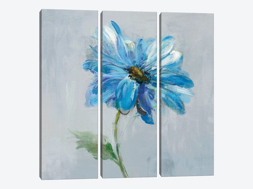 Floral Bloom I by Danhui Nai 3-piece Canvas Art Print
