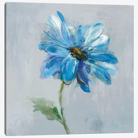 Floral Bloom I Canvas Print #WAC7634} by Danhui Nai Canvas Print