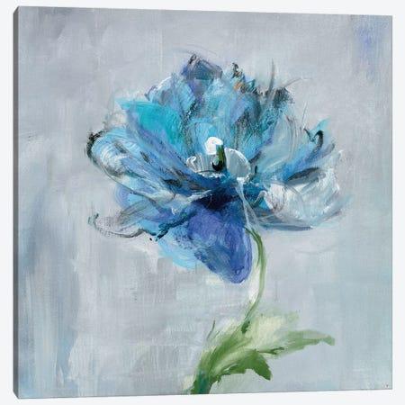 Floral Bloom II Canvas Print #WAC7635} by Danhui Nai Canvas Print