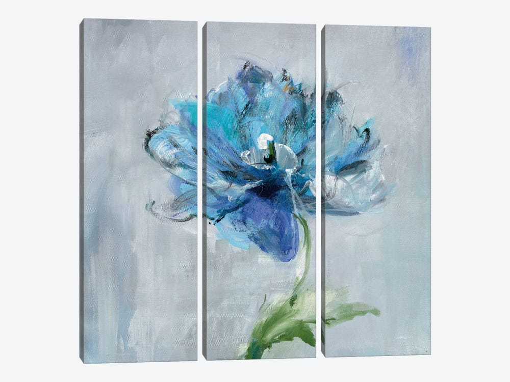 Floral Bloom II by Danhui Nai 3-piece Canvas Wall Art