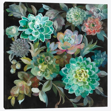 Floral Succulents Canvas Print #WAC7636} by Danhui Nai Canvas Art Print