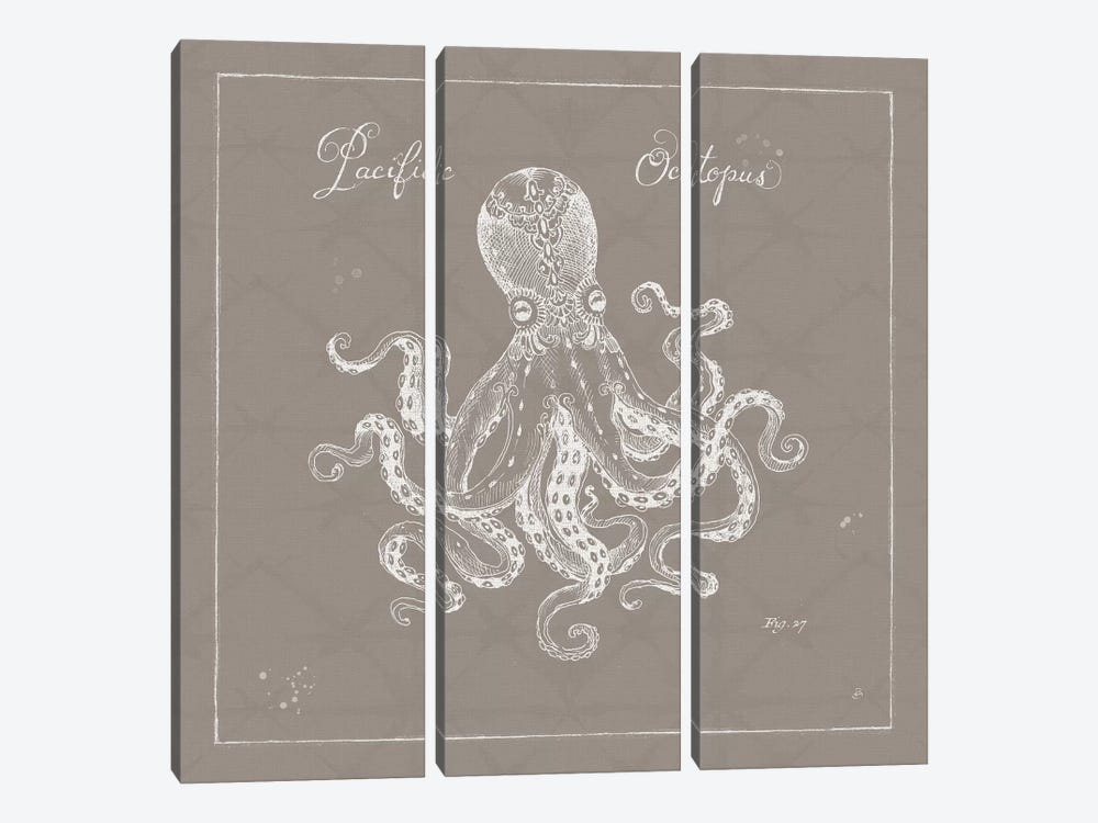 Underwater Life In Greige X by Daphne Brissonnet 3-piece Canvas Art
