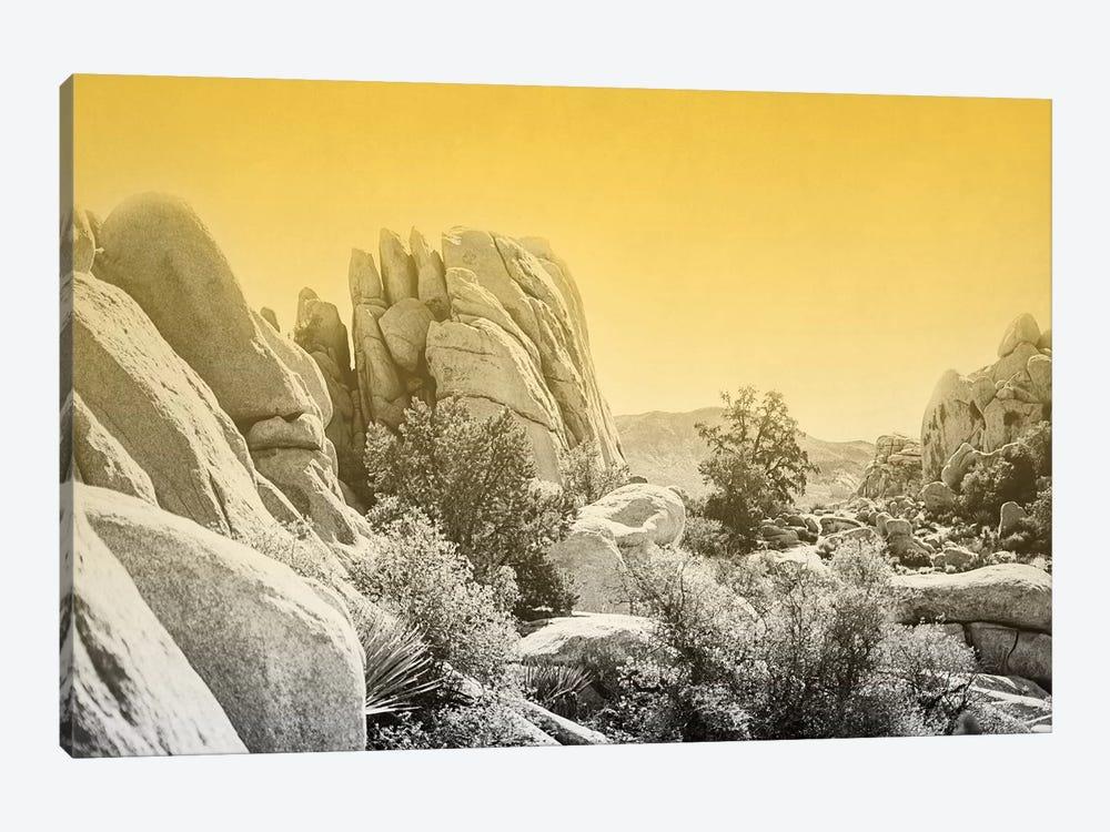 Ombre Adventure I by Elizabeth Urquhart 1-piece Canvas Artwork