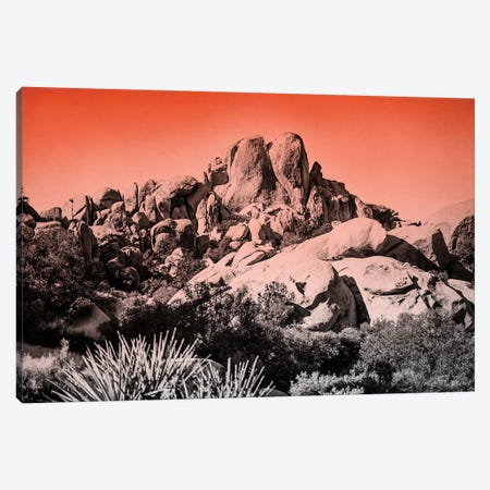 Ombre Adventure II Canvas Print #WAC7658} by Elizabeth Urquhart Canvas Artwork