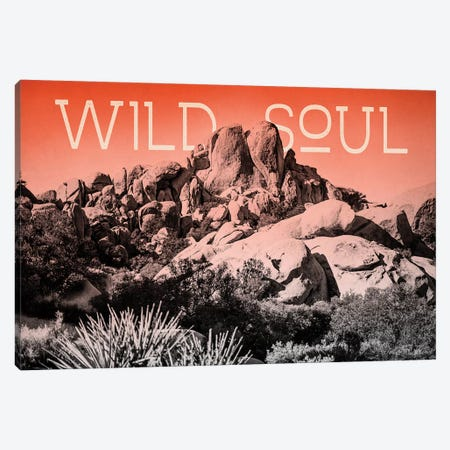 Ombre Adventure II Wild Soul Canvas Print #WAC7659} by Elizabeth Urquhart Canvas Artwork