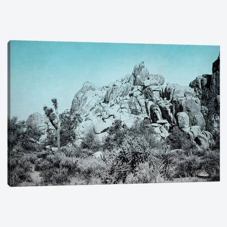 Ombre Adventure III Canvas Print #WAC7660} by Elizabeth Urquhart Canvas Print