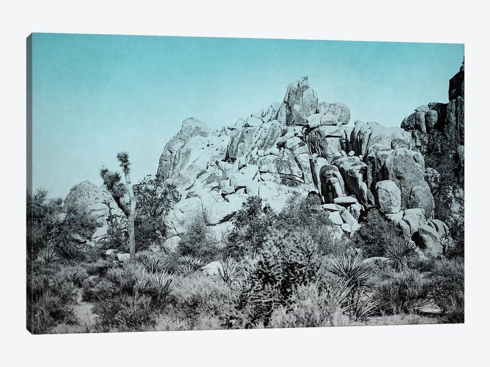 Ombre Adventure III by Elizabeth Urquhart 1-piece Canvas Wall Art