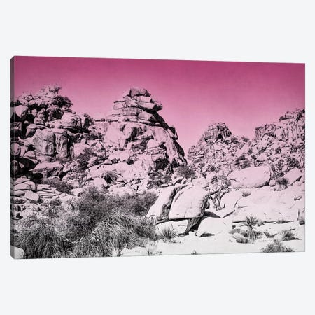 Ombre Adventure IV Canvas Print #WAC7662} by Elizabeth Urquhart Art Print
