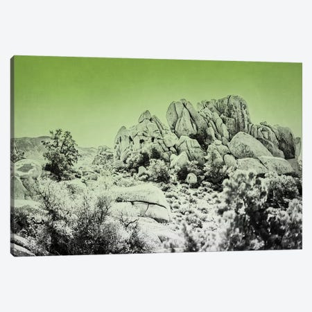 Ombre Adventure V Canvas Print #WAC7663} by Elizabeth Urquhart Canvas Print