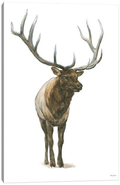 Natural Majesty I Canvas Art Print
