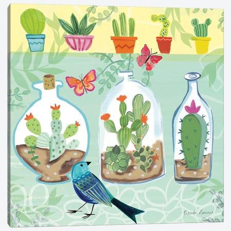 Cacti Garden I Canvas Print #WAC7689} by Farida Zaman Canvas Art Print