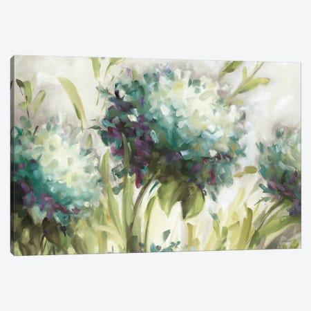 Hydrangea Field Canvas Print #WAC770} by Lisa Audit Canvas Artwork