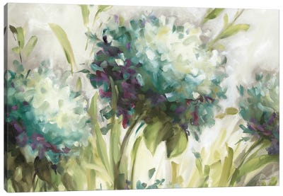 Hydrangea Field Canvas Art Print