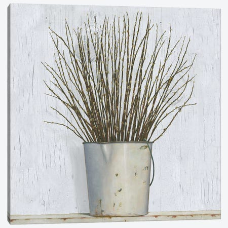 Early Spring Canvas Print #WAC7716} by James Wiens Canvas Artwork