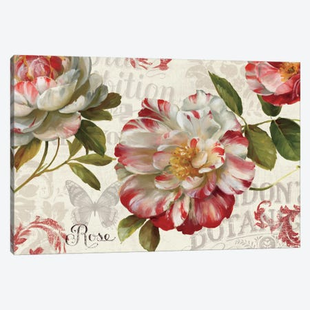 Spring Flair I Canvas Print #WAC771} by Lisa Audit Canvas Wall Art