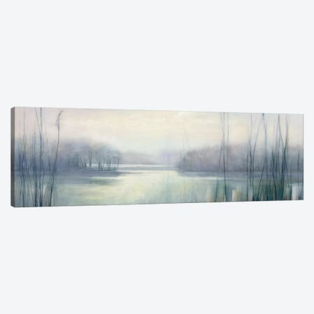 Misty Memories Canvas Print #WAC7725} by Julia Purinton Canvas Print