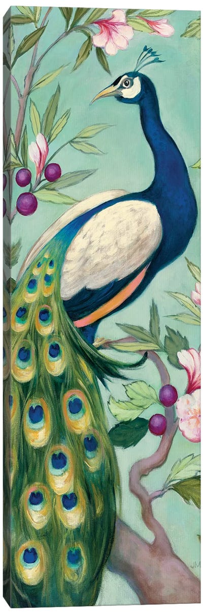 Pretty Peacock II Canvas Art Print