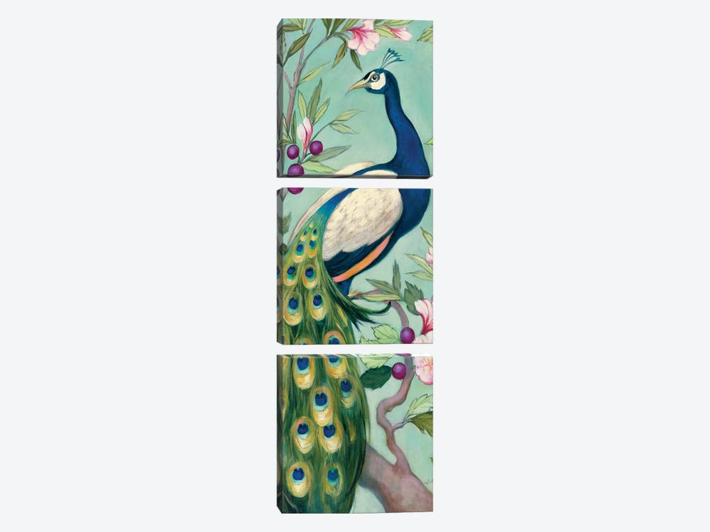 Pretty Peacock II by Julia Purinton 3-piece Canvas Wall Art