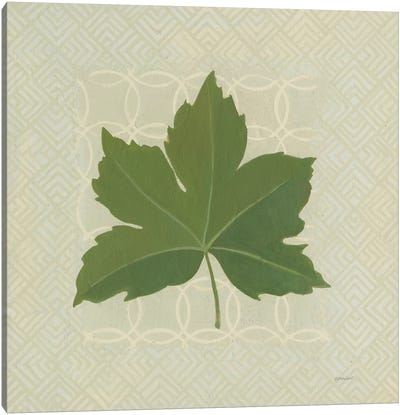 Forest Leaves I Canvas Art Print