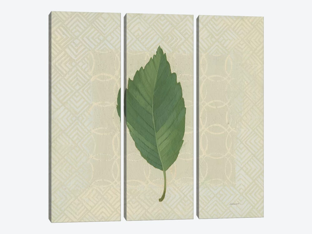 Forest Leaves III by Kathrine Lovell 3-piece Canvas Artwork