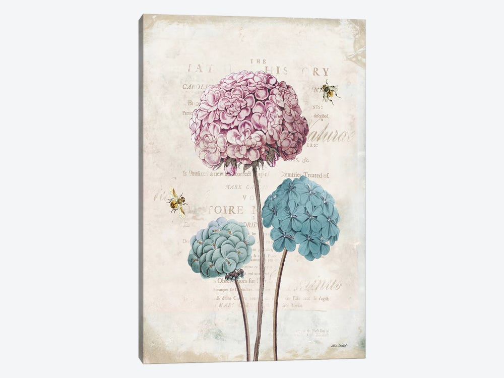 Geranium Study, Pink Flower I by Katie Pertiet 1-piece Canvas Art Print
